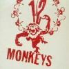 [十二只猴子/十二猴子军][BD-720P-MP4][英语中字][豆瓣8.0分][1.9GB][1995]