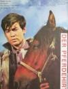1982年国产经典爱情片《牧马人》HD国语中字