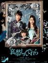 2021年日本6.0分犯罪片《哀愁灰姑娘》BD日语中字